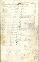 Railroad Laborer Diary, July 1894